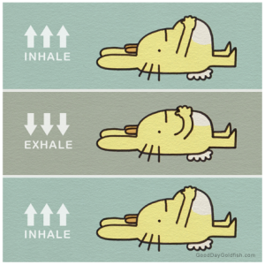 belly-breathing-exercise-article